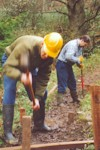 Building a boardwalk at Peasedean